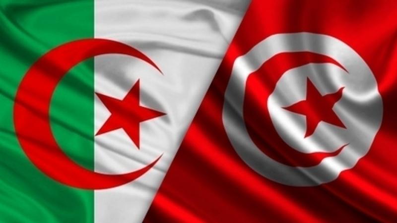 تونس- الجزائر: إلغاء تسعيرة خدمات التجوال الدولي