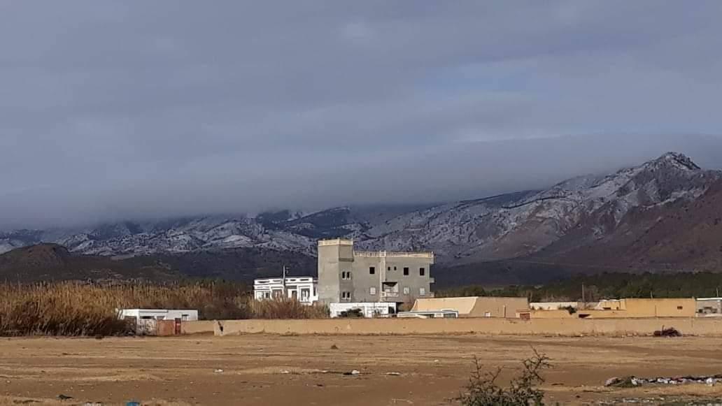منذر الزنايدي يخلف سليم الرياحي على رأس نداء تونس