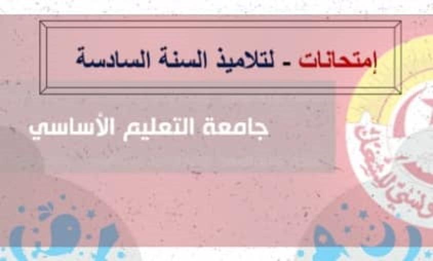 منظمة البوصلة تتّهم البرلمان بخرق النّظام الدّاخلي