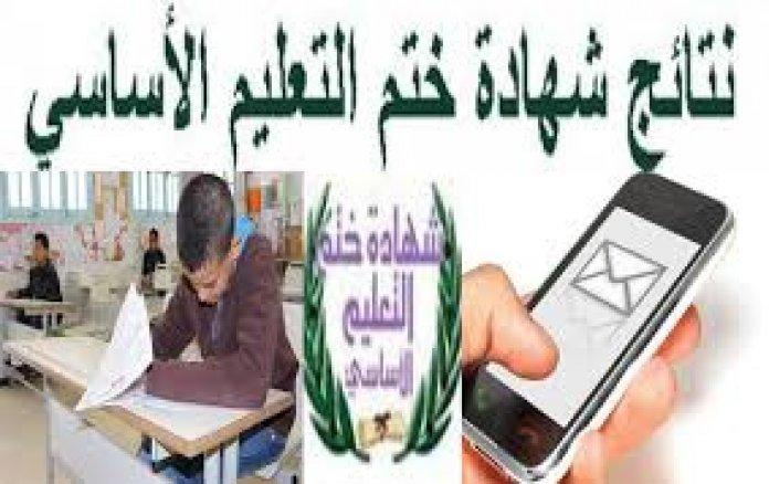 القسومي : الهيئة الفرعيّة للانتخابات تستكمل استعداداتها اللوجستية للإنتخابات الجزئية لبلدية العيون