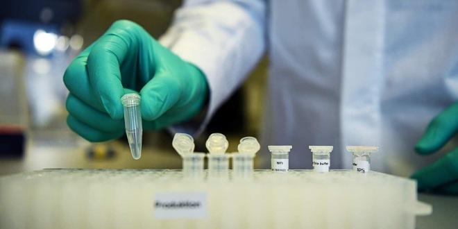 باحثة في علم الفيروسات : توصلنا الى تحليل التسلسل الجيني لفيروس كورونا في تونس