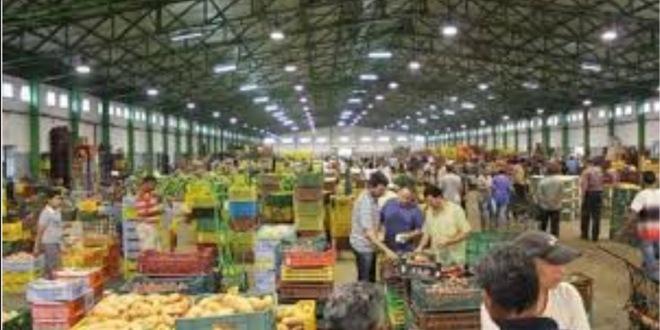 رئيسة بلدية تونس : غدا فتح السوق المركزية والأسواق البلدية