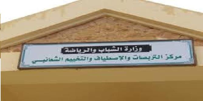 نشر ديون حرفاء الشركة التونسية للكهرباء والغازحسب الولايات والقطاعات